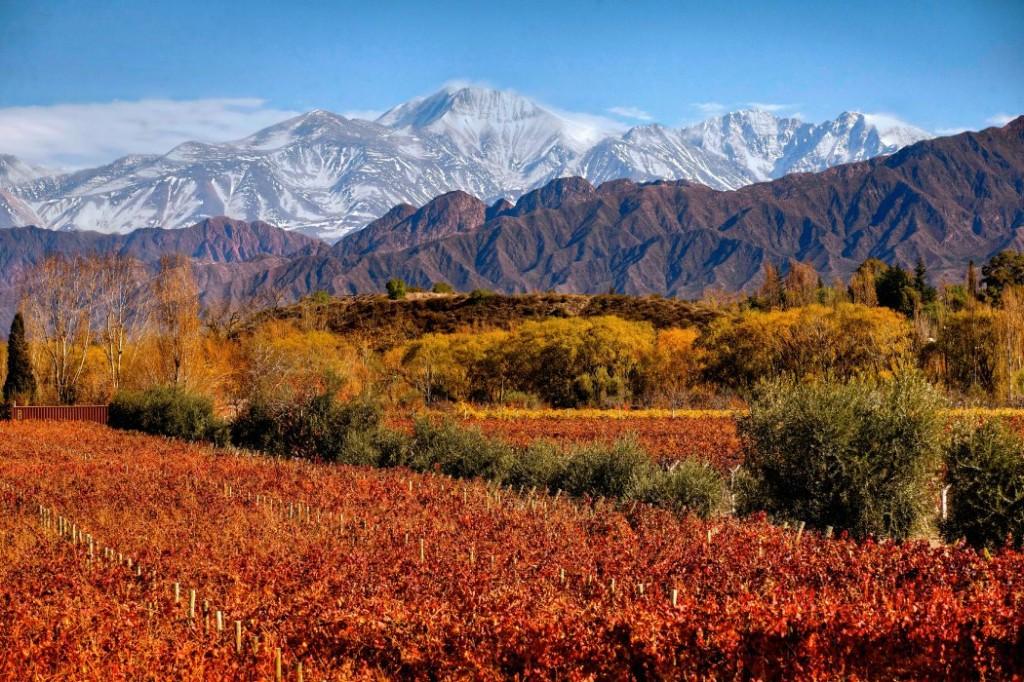 Disfrutar de la vinoterapia y Hammam en Argentina