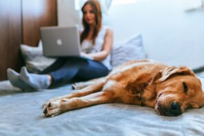 5 Good reasons to adopt a pet in midlife and beyond