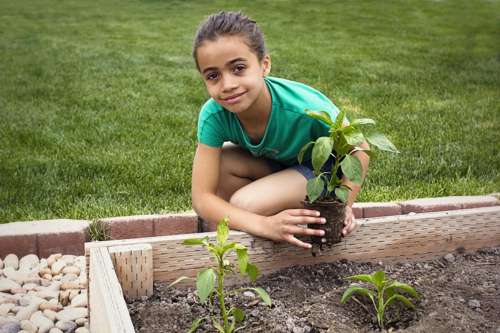 Niña plantando un huerto