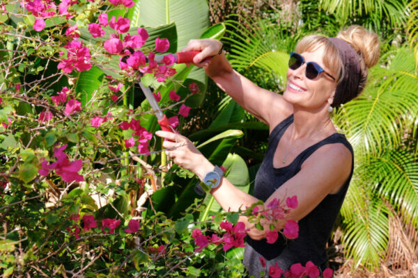 I'm on a 90-day journey to take my blood pressure regularly while working on reducing stress by gardening. This is how it's going. #ad #GoingForZero